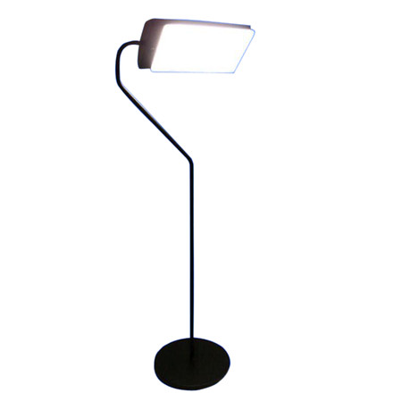 Northern Light Technologies Light Therapy 10,000 Lux 4-feet Floor Lamp - 1 ea