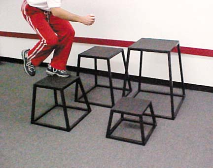 "6"" Plyometric Box"