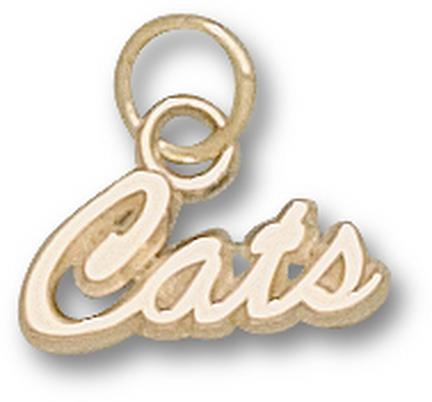 """Arizona Wildcats Script """"Cats"""" Charm - 14KT Gold Jewelry"""
