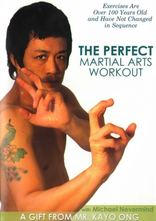 BAYVIEW BAY351 PERFECT MARTIAL ARTS WORKOUT WITH MICHAEL NEVERMIND
