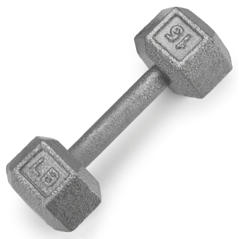 BrybellyHoldings SWGT-304 15 lbs. Cast Iron Hex Dumbbell