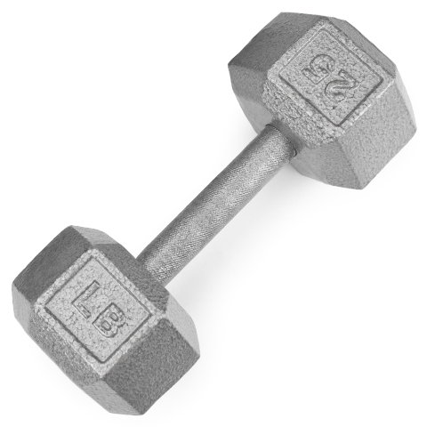 BrybellyHoldings SWGT-306 25 lbs. Cast Iron Hex Dumbbell