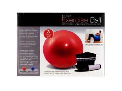 Bulk Buys OB350-2 Exercise Ball With Pump
