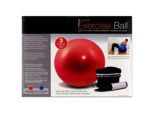 Bulk Buys OB350-3 Exercise Ball With Pump