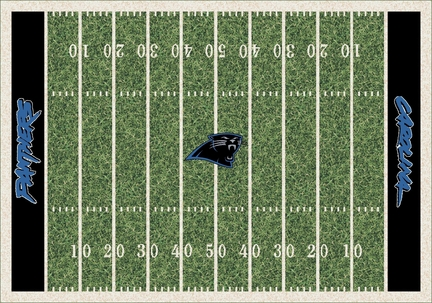 "Carolina Panthers 3' 10"" x 5' 4"" Home Field Area Rug"