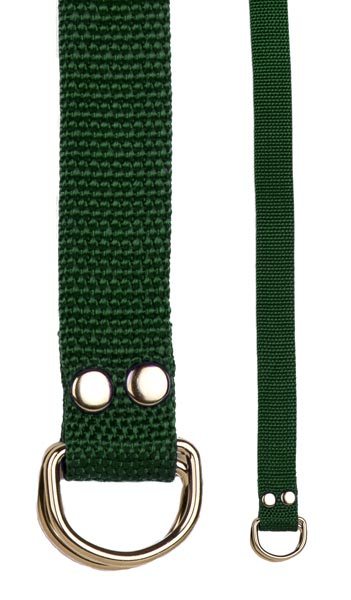 Champion Sports 20209 Football Belt Green