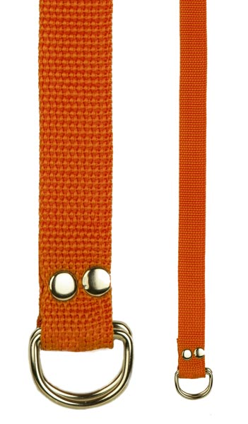 Champion Sports 20213 Football Belt Orange