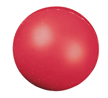 Champion Sports CHSHD4 High Density Coated Foam Ball 4In