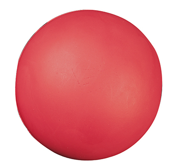 Champion Sports CHSHD85 High Density Coated Foam Ball 8In