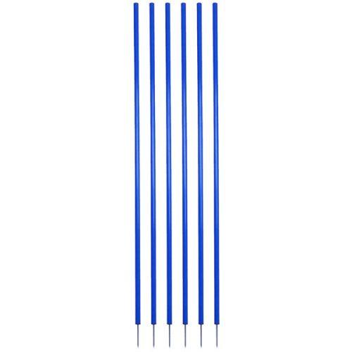 Champion Sports CS6BL Coaching Stick Set Royal Blue - Set of 6