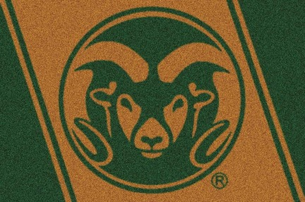 "Colorado State Rams 3'10"" x 5'4"" Team Spirit Area Rug"
