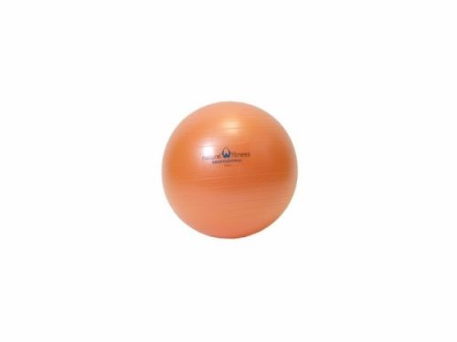 Ecowise 85500 Fitness Ball- Sunflower