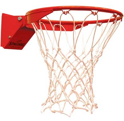 Flex Breakaway Basketball Goal from Spalding