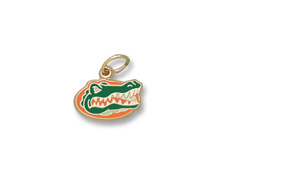 "Florida Gators Enamel ""Gator Head"" 5/16"" Charm - 10KT Gold Jewelry"