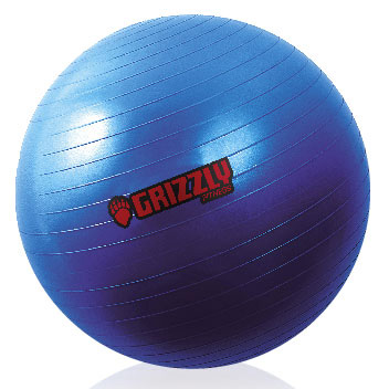 "Grizzly Fitness 8102-27 29.5"" Anti Burst Training Ball"