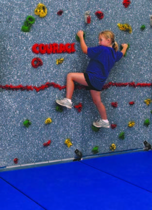 Groperz Character Holds for Climbing Wall - Set 2 from Everlast Climbing