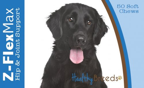 Healthy Breeds 840235107002 Flat Coated Retriever Z-Flex Max Hip & Joint Soft Chews - 50 count