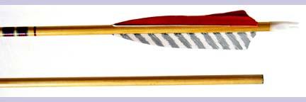 Hunter Premium Cedar 11/32 Arrow (1 Dozen) from Hot Shot Manufacturing