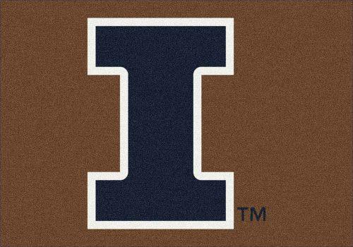 """Illinois Fighting Illini 3'10""""x 5'4"""" Team Spirit Area Rug"""