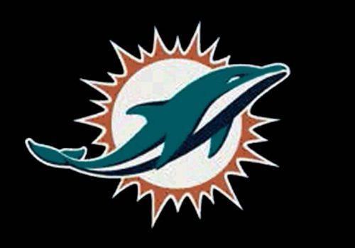 "Miami Dolphins 3' 10"" x 5' 4"" Team Spirit Area Rug"