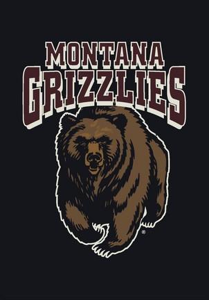 "Montana Grizzlies 3'10""x 5'4"" Team Spirit Area Rug"