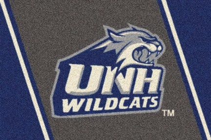 "New Hampshire Wildcats 3'10"" x 5'4"" Team Spirit Area Rug"