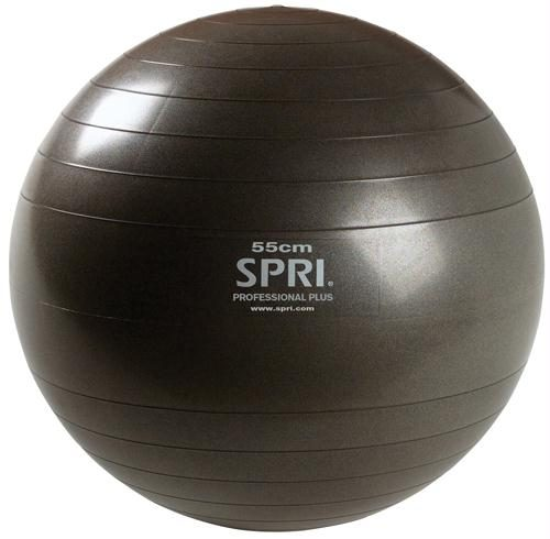 Olympia Sports BL370P Professional Plus Ball - 55cm