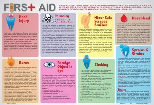 Painless Learning AID-1 First Aid Placemat