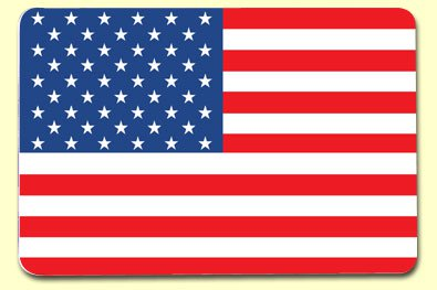 Painless Learning AMR-1 American Flag Placemat
