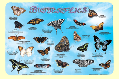 Painless Learning BUT-1 Butterflies Placemat