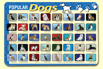 Painless Learning DOG-1 Popular Dogs Placemat