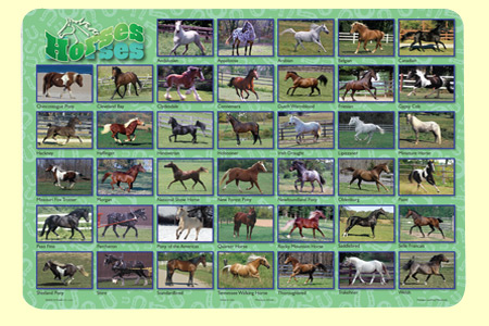 Painless Learning HOR-1 Horses Placemat