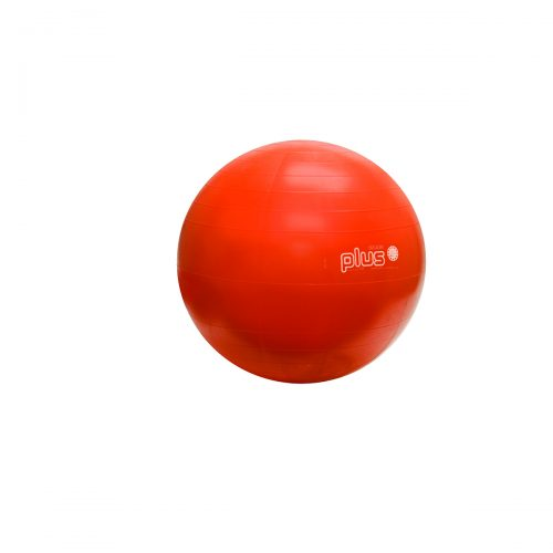 Physiogymnic 30-1701 22 in. Inflatable Exercise Ball Orange