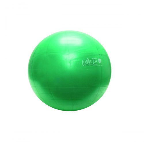 Physiogymnic 30-1702 26 in. Inflatable Exercise Ball Green