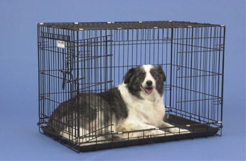 Precision Pet 1125-GRC4000BLK 2-Door Black Great Crate 4000 - 36 x 23 x 26 Inch