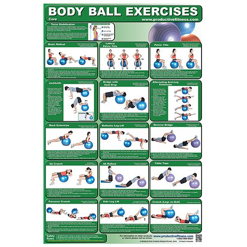 Productive Fitness 1389843 Body Ball Poster Set