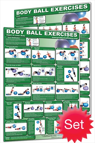 Productive Fitness CB-Set Body Ball Poster Set - Laminated only