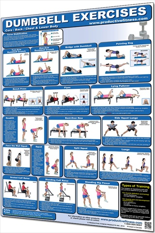 Productive Fitness CDLL Dumbbell Core Back Chest and Lower Body - Laminated