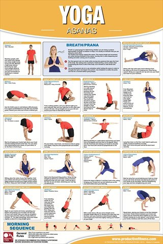 Productive Fitness CYL Yoga Asanas - Laminated