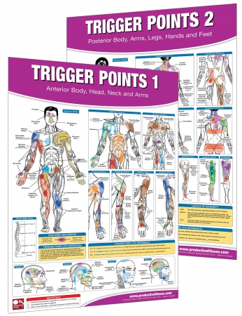 Productive Fitness TP-SET Trigger Points Set