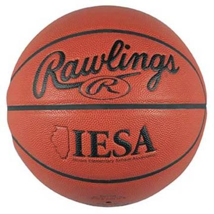 Rawlings Official IESA Basketball