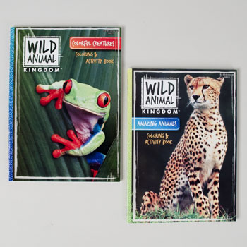 Regent Products 148510 Color & Activity book Wild - Pack of 24