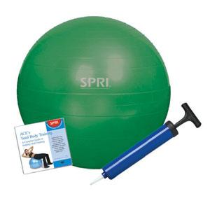 SPRI Xercise Ball 45 cm Stability Ball Training Kit with DVD