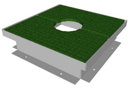 Solid Plug with Turf for Access Frame