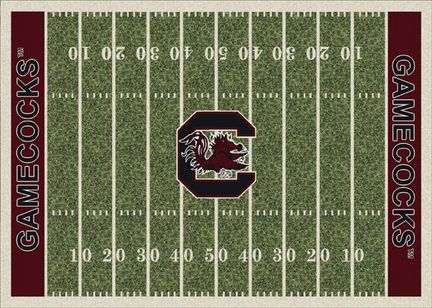 "South Carolina Gamecocks 3' 10"" x 5' 4"" Home Field Area Rug"