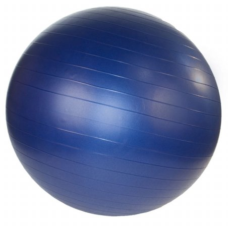 Stability Exercise Ball 55cm - Pearl Blue