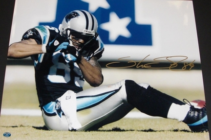 "Steve Smith ""On the Field"" Autographed Carolina Panthers Action 16"" x 20"" Photograph Steve Smith Authenticity (Unframed)"