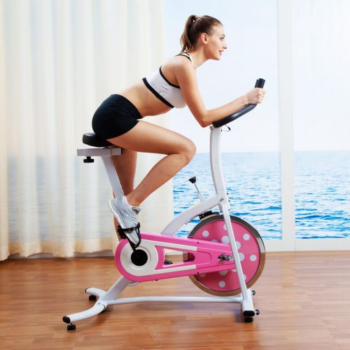 Sunny Health & Fitness P8100 Indoor Cycling Bike Pink
