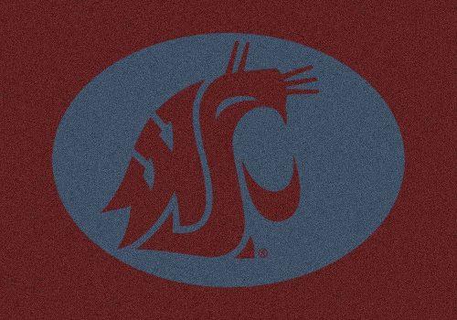"Washington State Cougars 3'10""x 5'4"" Team Spirit Area Rug"