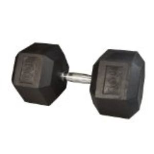 Rubber Hex Dumbbell- 100 lbs.